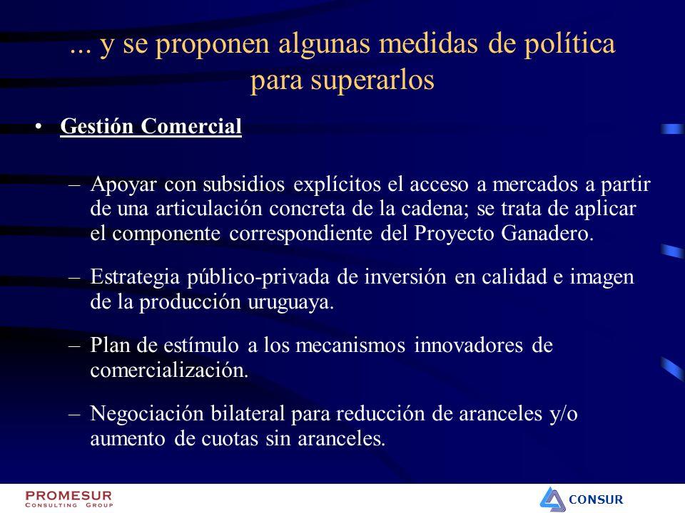 CONSUR Gestión Comercial –Apoyar con subsidios explícitos el acceso a mercados a partir de una articulación concreta de la cadena; se trata de aplicar