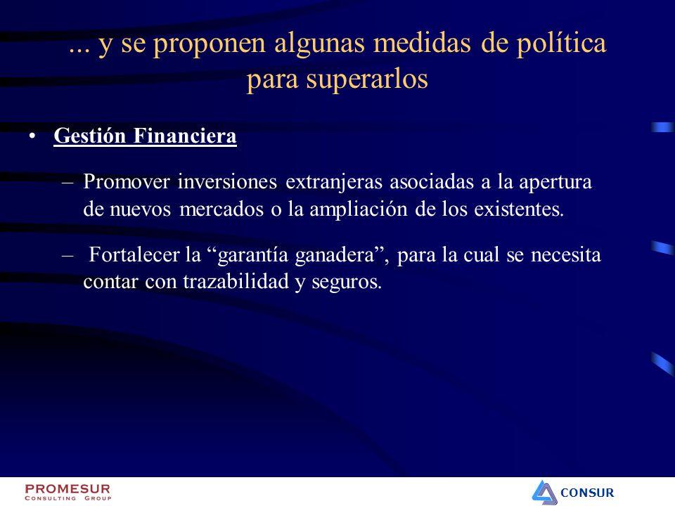 CONSUR Gestión Financiera –Promover inversiones extranjeras asociadas a la apertura de nuevos mercados o la ampliación de los existentes. – Fortalecer