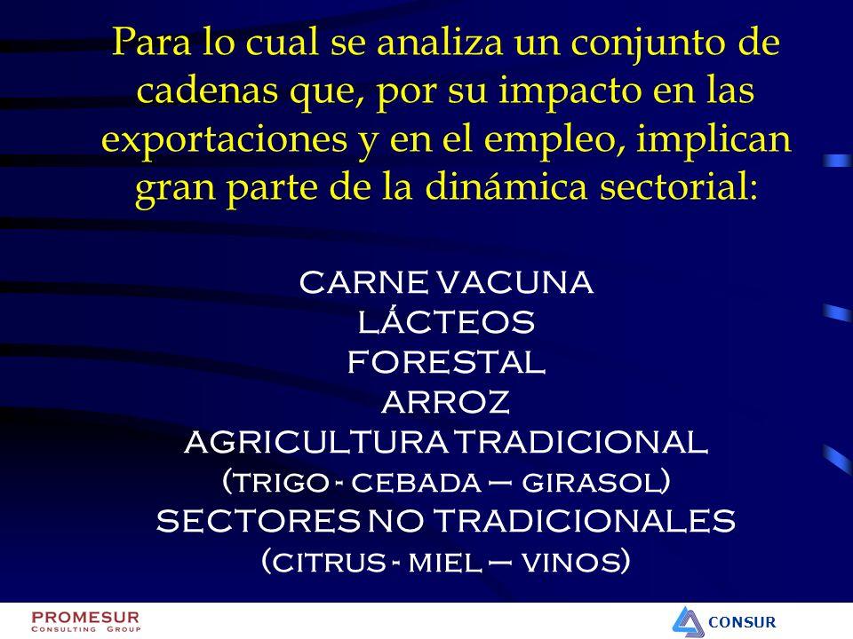 CONSUR Inserción de Mercados PAÍS Indice de concentración*Mercados Principales Uruguay 284 Brasil (50%) UK (10%) EE.UU.