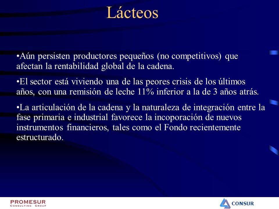 CONSUR Lácteos Aún persisten productores pequeños (no competitivos) que afectan la rentabilidad global de la cadena. El sector está viviendo una de la
