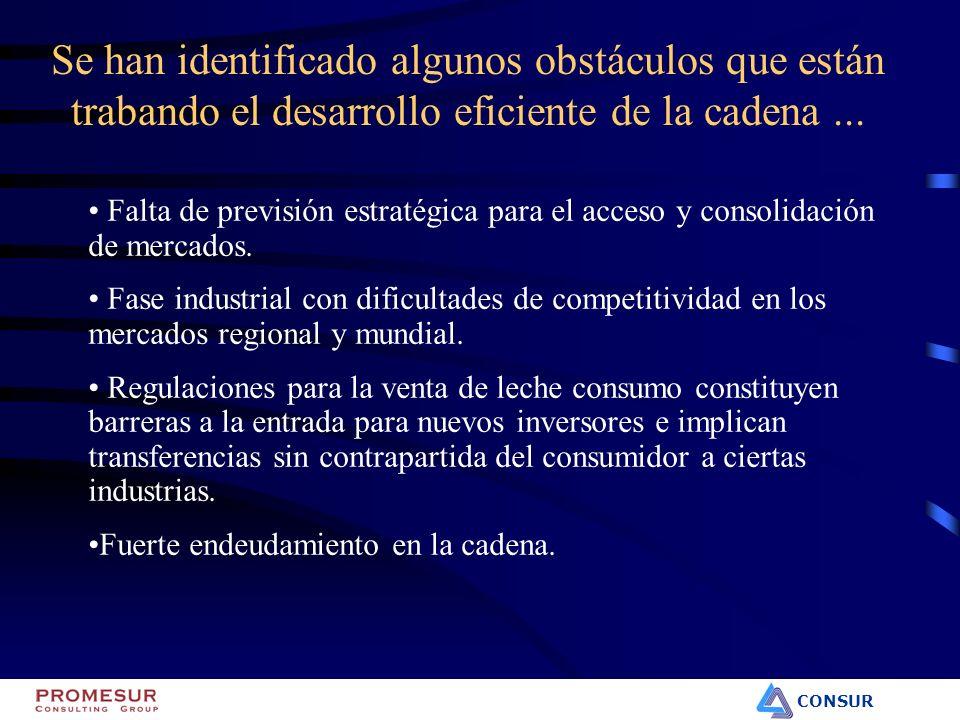 CONSUR Falta de previsión estratégica para el acceso y consolidación de mercados. Fase industrial con dificultades de competitividad en los mercados r