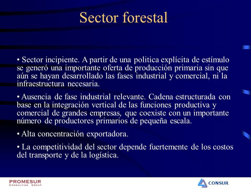 CONSUR Sector forestal Sector incipiente. A partir de una politica explícita de estímulo se generó una importante oferta de producción primaria sin qu