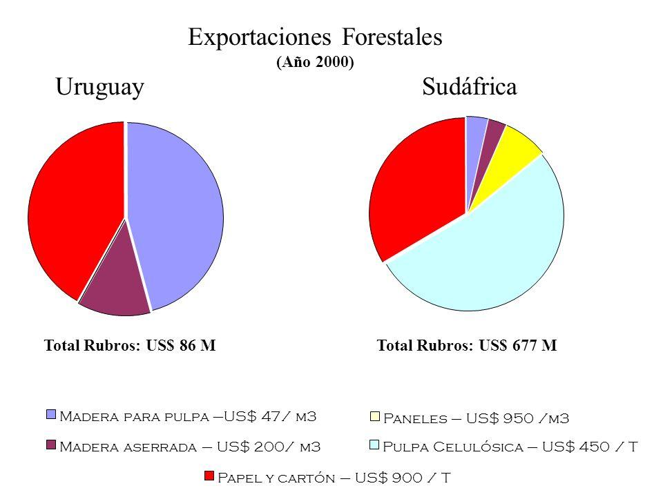 Madera para pulpa –US$ 47/ m3 Madera aserrada – US$ 200/ m3 Paneles – US$ 950 /m3 Pulpa Celulósica – US$ 450 / T Papel y cartón – US$ 900 / T Exportac