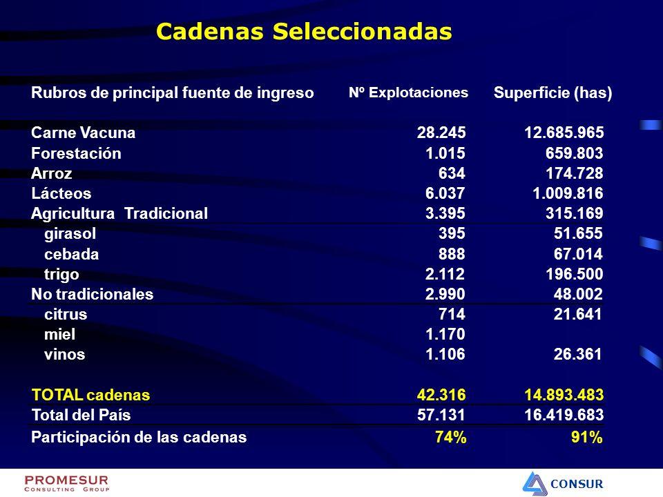 CONSUR en miles de dólares Año 2000 Carne Vacuna403.960 Forestal108.990 Arroz165.431 Lácteos125.412 Agricultura Tradicional58.616 No tradicionales40.644 citrus30.839 miel3.047 vinos6.758 TOTAL CADENAS SELECCIONADAS903.053 TOTAL EXPORTACIONES URUGUAY2.299.458 Cadenas/ agro exportaciones62% Exportaciones TOTAL AGROEXPORTACIONES1.453.041 Cadenas/ exportaciones totales40%