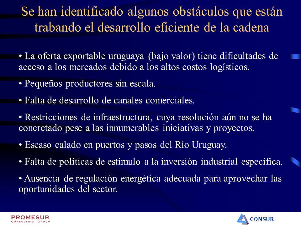 CONSUR La oferta exportable uruguaya (bajo valor) tiene dificultades de acceso a los mercados debido a los altos costos logísticos. Pequeños productor