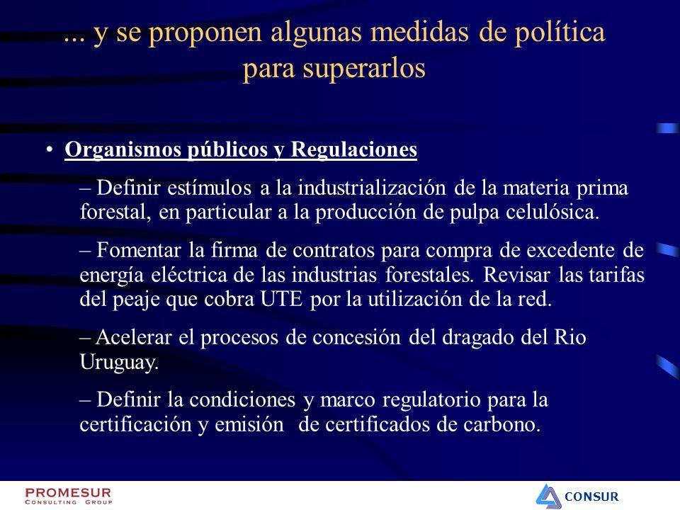CONSUR Organismos públicos y Regulaciones – Definir estímulos a la industrialización de la materia prima forestal, en particular a la producción de pu