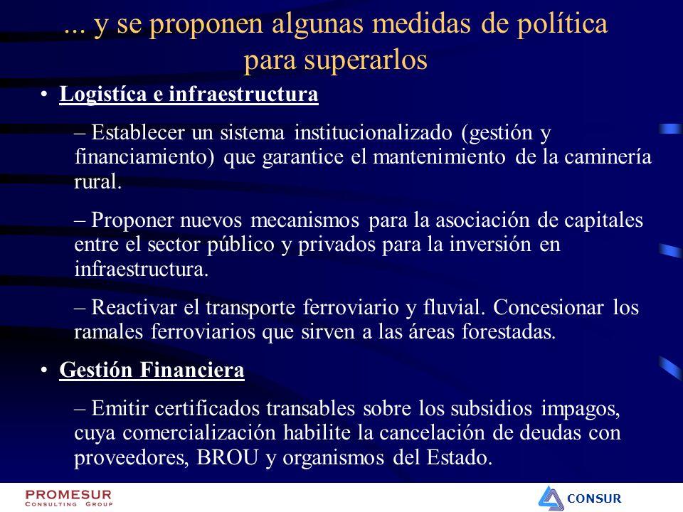 CONSUR Logistíca e infraestructura – Establecer un sistema institucionalizado (gestión y financiamiento) que garantice el mantenimiento de la caminerí