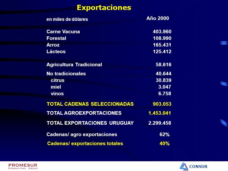 CONSUR Organismos públicos y Regulaciones –Contralor de la informalidad en el sector molinero de trigo.