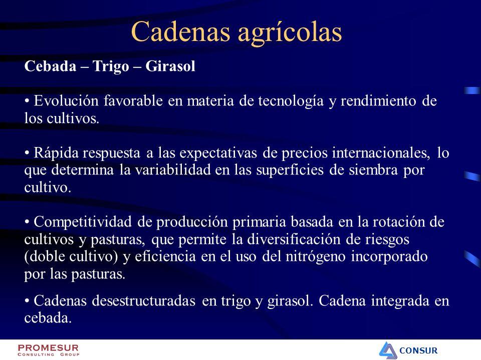 CONSUR Cadenas agrícolas Cebada – Trigo – Girasol Evolución favorable en materia de tecnología y rendimiento de los cultivos. Rápida respuesta a las e