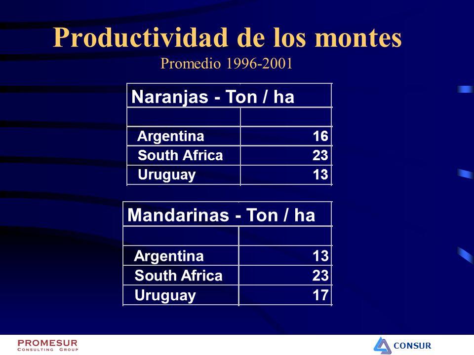CONSUR Productividad de los montes Promedio 1996-2001 Naranjas - Ton / ha Argentina16 South Africa23 Uruguay13 Mandarinas - Ton / ha Argentina13 South