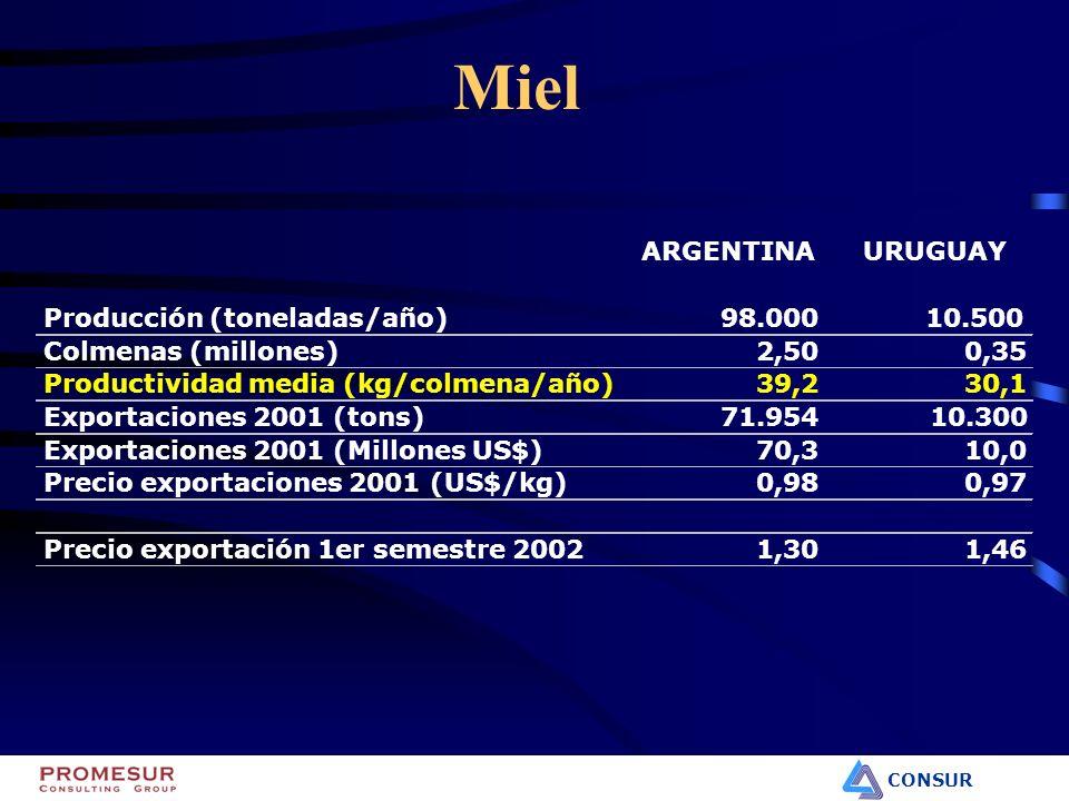 CONSUR Miel ARGENTINAURUGUAY Producción (toneladas/año)98.00010.500 Colmenas (millones)2,500,35 Productividad media (kg/colmena/año)39,230,1 Exportaci