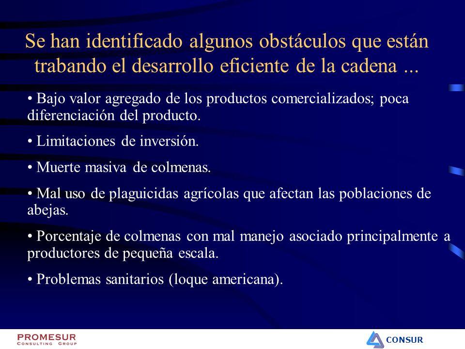 CONSUR Bajo valor agregado de los productos comercializados; poca diferenciación del producto. Limitaciones de inversión. Muerte masiva de colmenas. M