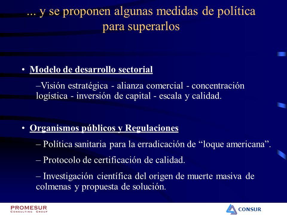 CONSUR Modelo de desarrollo sectorial –Visión estratégica - alianza comercial - concentración logística - inversión de capital - escala y calidad. Org