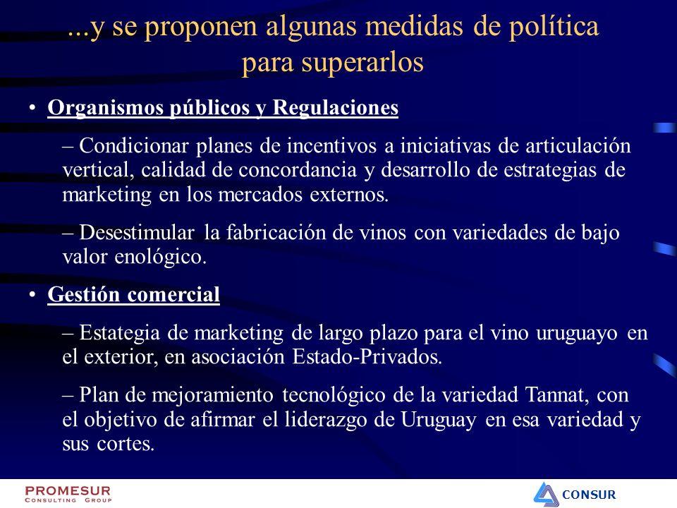 CONSUR...y se proponen algunas medidas de política para superarlos Organismos públicos y Regulaciones – Condicionar planes de incentivos a iniciativas