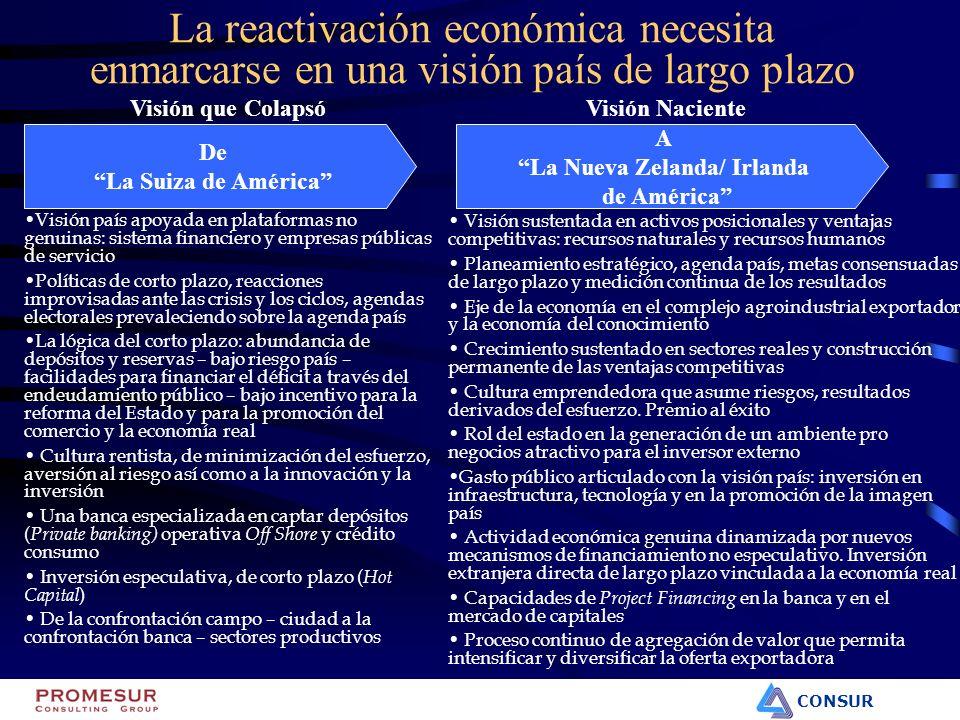 CONSUR La reactivación económica necesita enmarcarse en una visión país de largo plazo Visión país apoyada en plataformas no genuinas: sistema financi