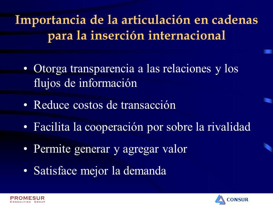 CONSUR Importancia de la articulación en cadenas para la inserción internacional Otorga transparencia a las relaciones y los flujos de información Red