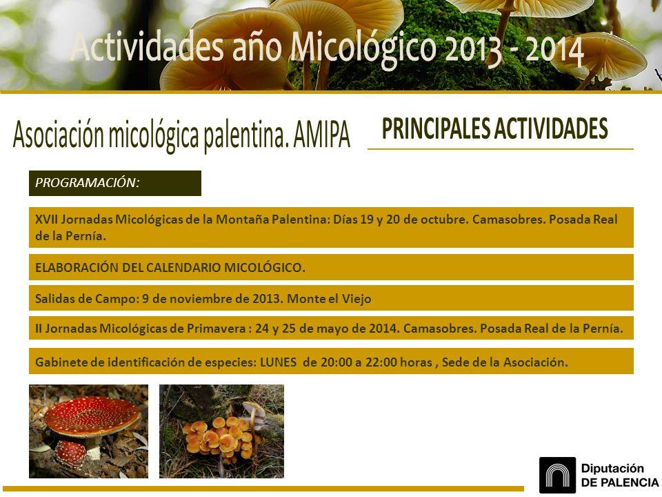XVII Jornadas Micológicas de la Montaña Palentina: Días 19 y 20 de octubre. Camasobres. Posada Real de la Pernía. PROGRAMACIÓN: Salidas de Campo: 9 de