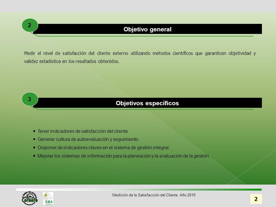 33 Medición de la Satisfacción del Cliente. Año 2010