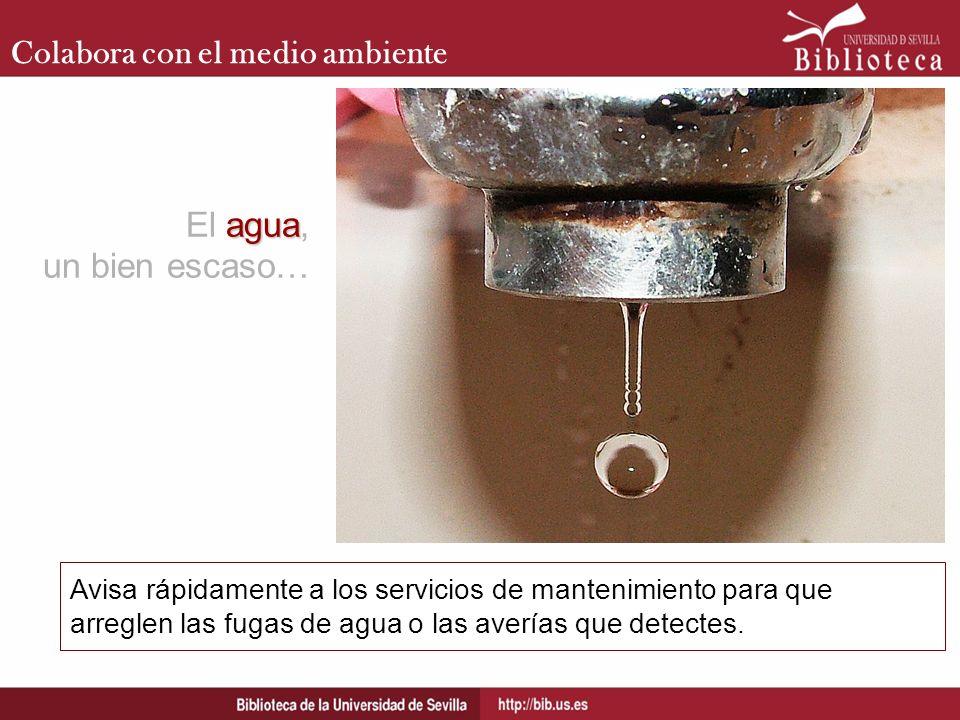 Colabora con el medio ambiente Avisa rápidamente a los servicios de mantenimiento para que arreglen las fugas de agua o las averías que detectes. agua