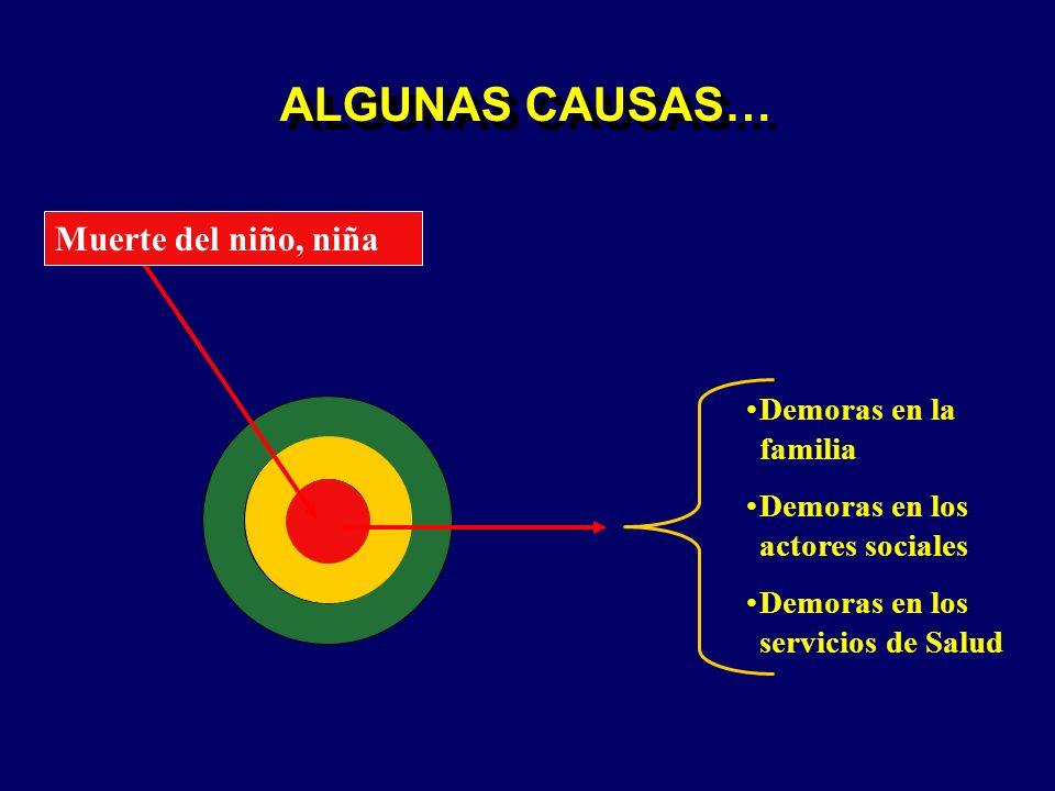 ALGUNAS CAUSAS… Muerte del niño, niña Demoras en la familia Demoras en los actores sociales Demoras en los servicios de Salud