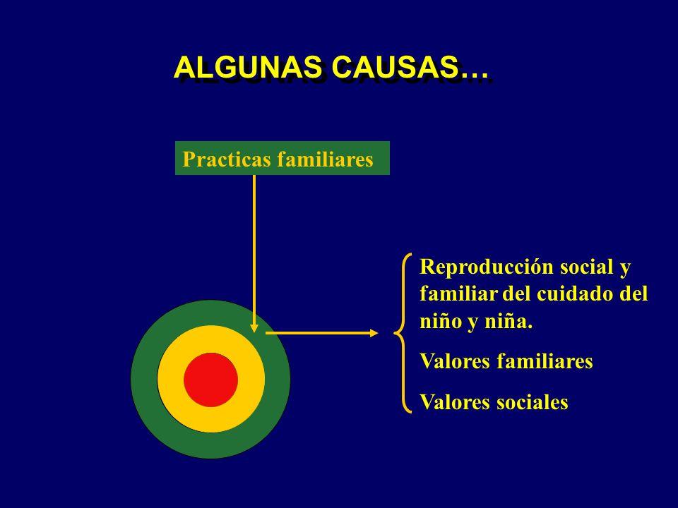 ALGUNAS CAUSAS… Practicas familiares Reproducción social y familiar del cuidado del niño y niña. Valores familiares Valores sociales