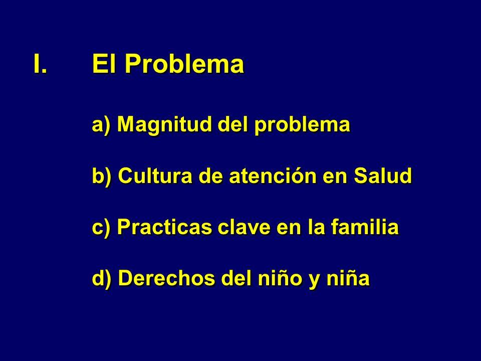 I.El Problema a) Magnitud del problema b) Cultura de atención en Salud c) Practicas clave en la familia d) Derechos del niño y niña