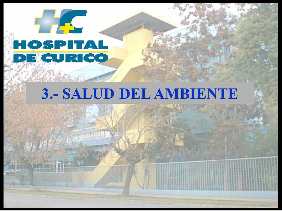 3.- SALUD DEL AMBIENTE