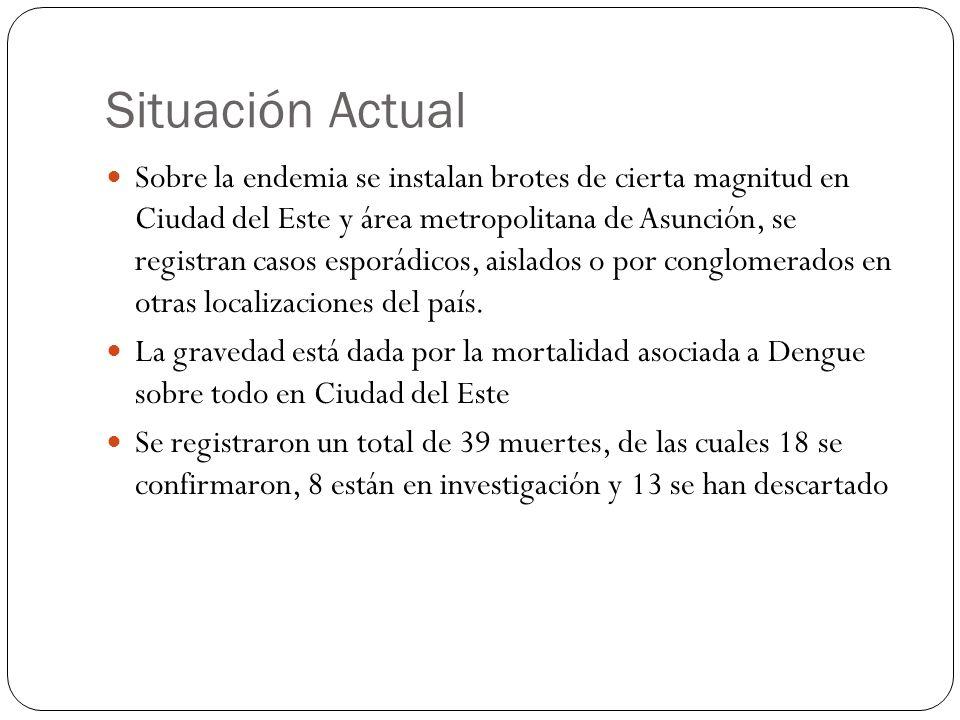 Situación Actual Sobre la endemia se instalan brotes de cierta magnitud en Ciudad del Este y área metropolitana de Asunción, se registran casos esporádicos, aislados o por conglomerados en otras localizaciones del país.