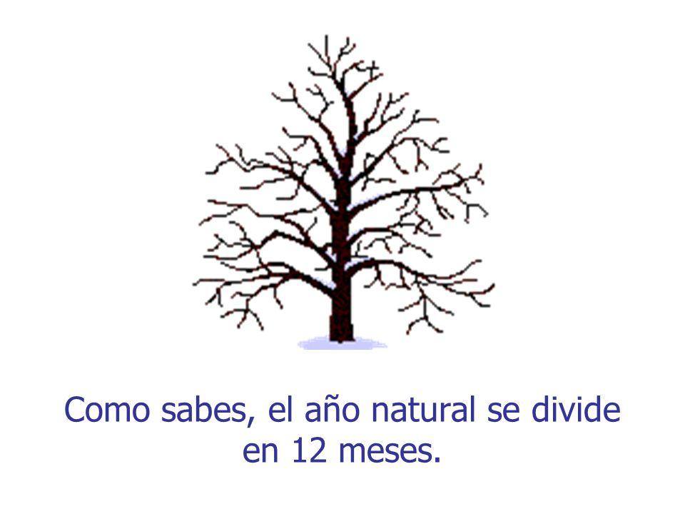 Como sabes, el año natural se divide en 12 meses.