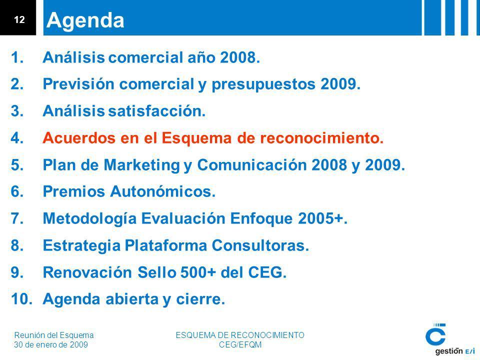 Reunión del Esquema 30 de enero de 2009 ESQUEMA DE RECONOCIMIENTO CEG/EFQM 12 Agenda 1.Análisis comercial año 2008.