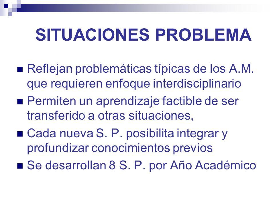 SITUACIONES PROBLEMA Reflejan problemáticas típicas de los A.M.