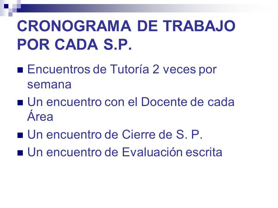 CRONOGRAMA DE TRABAJO POR CADA S.P.