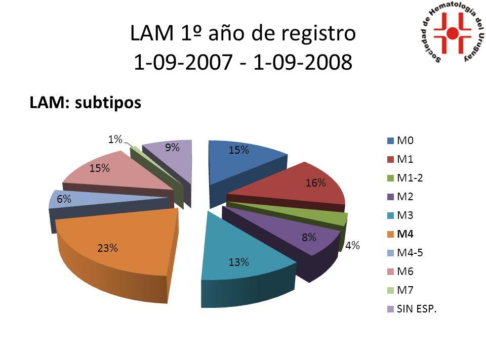LAM 1º año de registro 1-09-2007 - 1-09-2008 LAM: subtipos