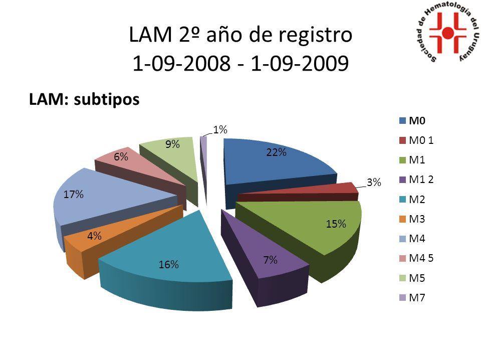LAM 3º año de registro 1-09-2009 – 1-09-2010 LAM: subtipos