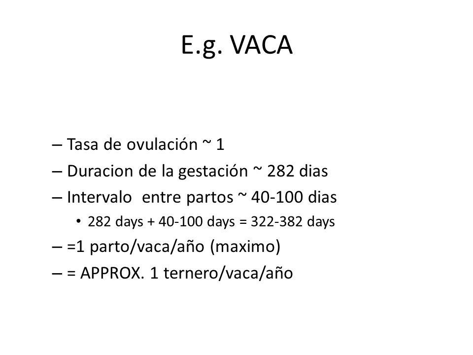 E.g. VACA – Tasa de ovulación ~ 1 – Duracion de la gestación ~ 282 dias – Intervalo entre partos ~ 40-100 dias 282 days + 40-100 days = 322-382 days –