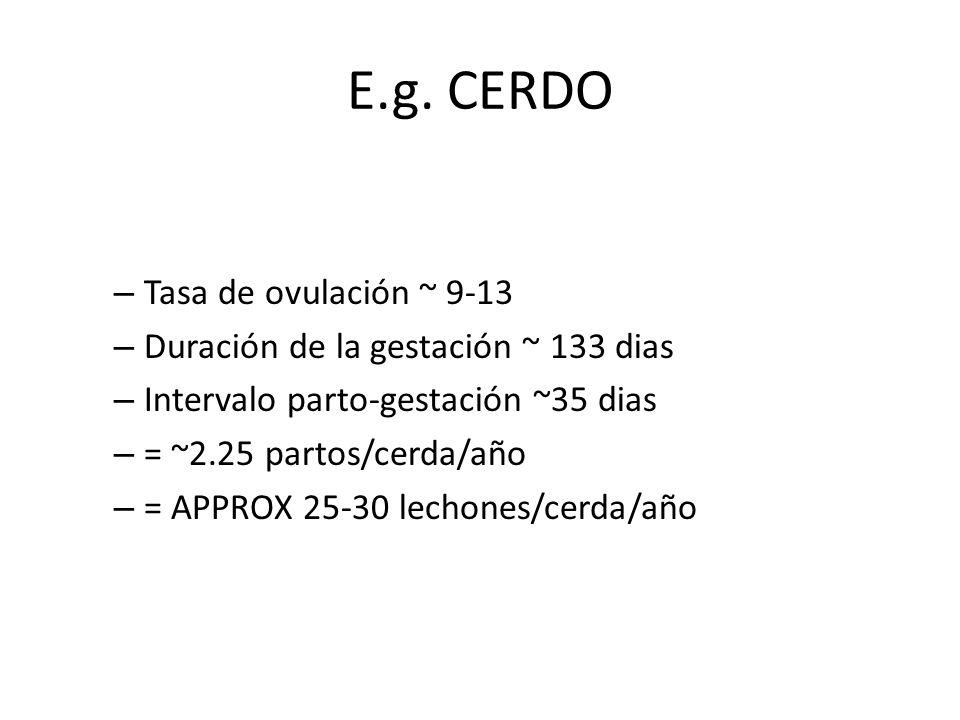 E.g. CERDO – Tasa de ovulación ~ 9-13 – Duración de la gestación ~ 133 dias – Intervalo parto-gestación ~35 dias – = ~2.25 partos/cerda/año – = APPROX