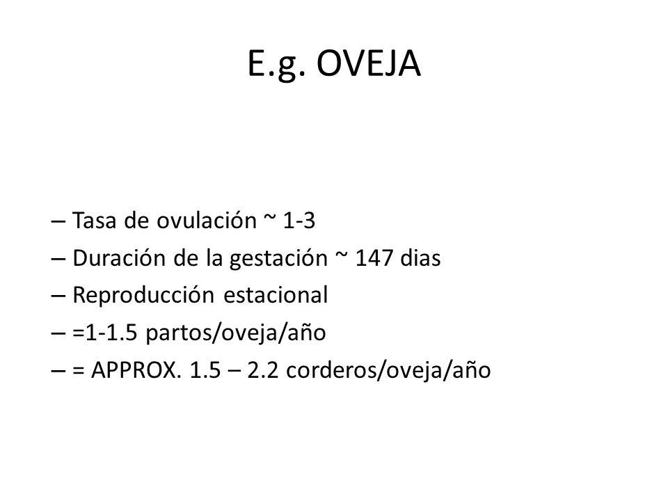 E.g. OVEJA – Tasa de ovulación ~ 1-3 – Duración de la gestación ~ 147 dias – Reproducción estacional – =1-1.5 partos/oveja/año – = APPROX. 1.5 – 2.2 c