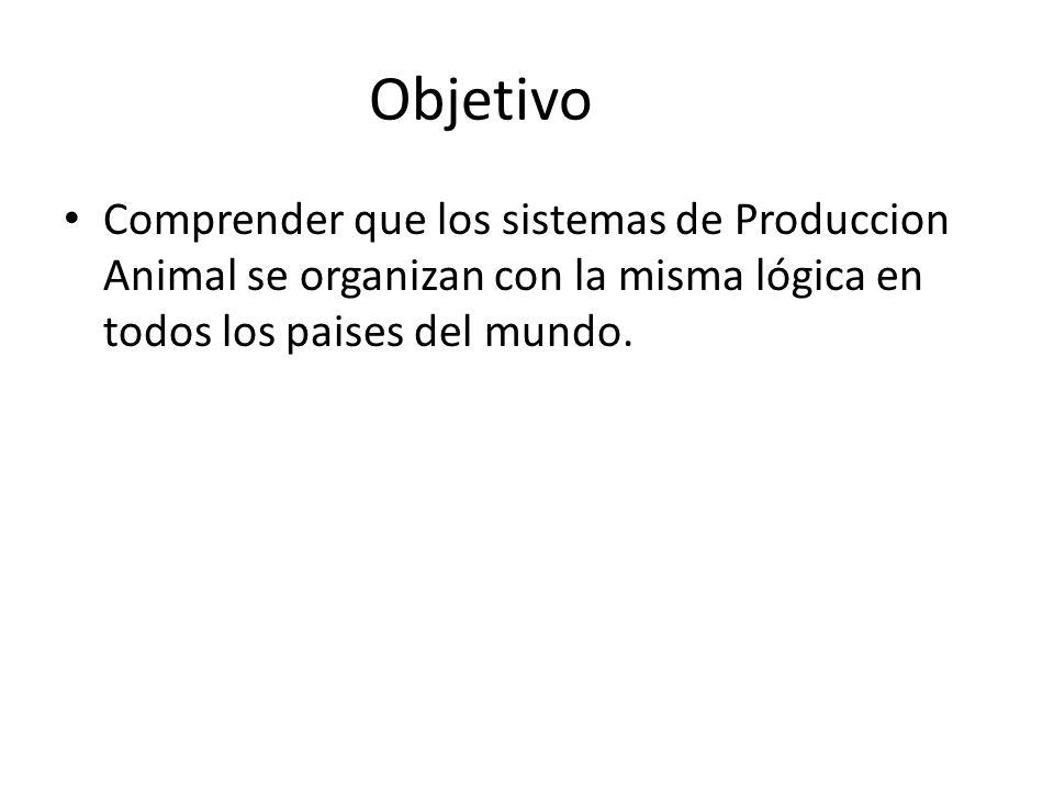 Objetivo Comprender que los sistemas de Produccion Animal se organizan con la misma lógica en todos los paises del mundo.