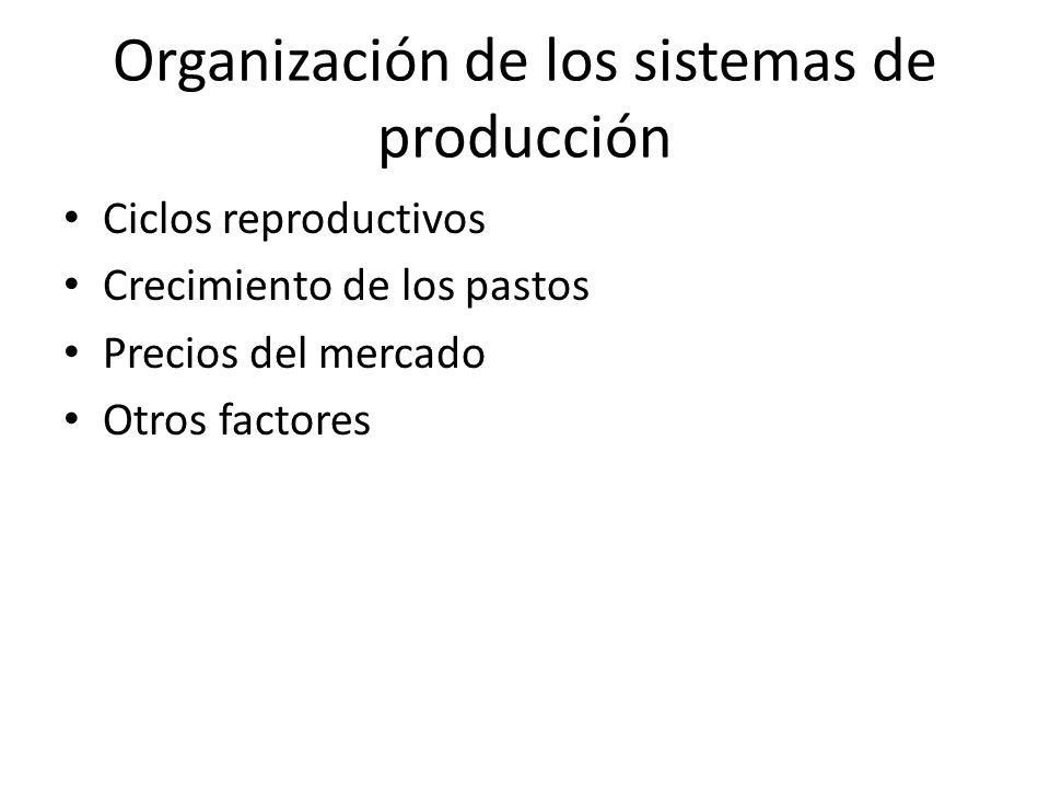 Organización de los sistemas de producción Ciclos reproductivos Crecimiento de los pastos Precios del mercado Otros factores