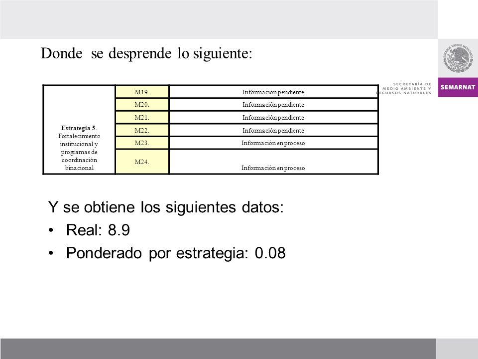 Estrategia 5. Fortalecimiento institucional y programas de coordinación binacional M19.