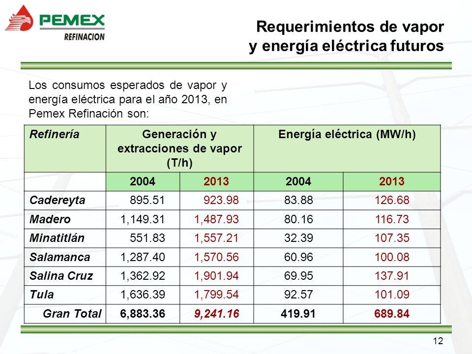 12 Requerimientos de vapor y energía eléctrica futuros Los consumos esperados de vapor y energía eléctrica para el año 2013, en Pemex Refinación son: