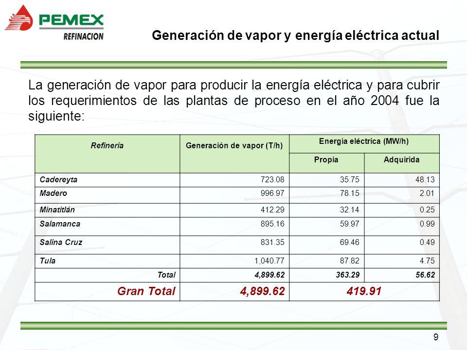 9 La generación de vapor para producir la energía eléctrica y para cubrir los requerimientos de las plantas de proceso en el año 2004 fue la siguiente