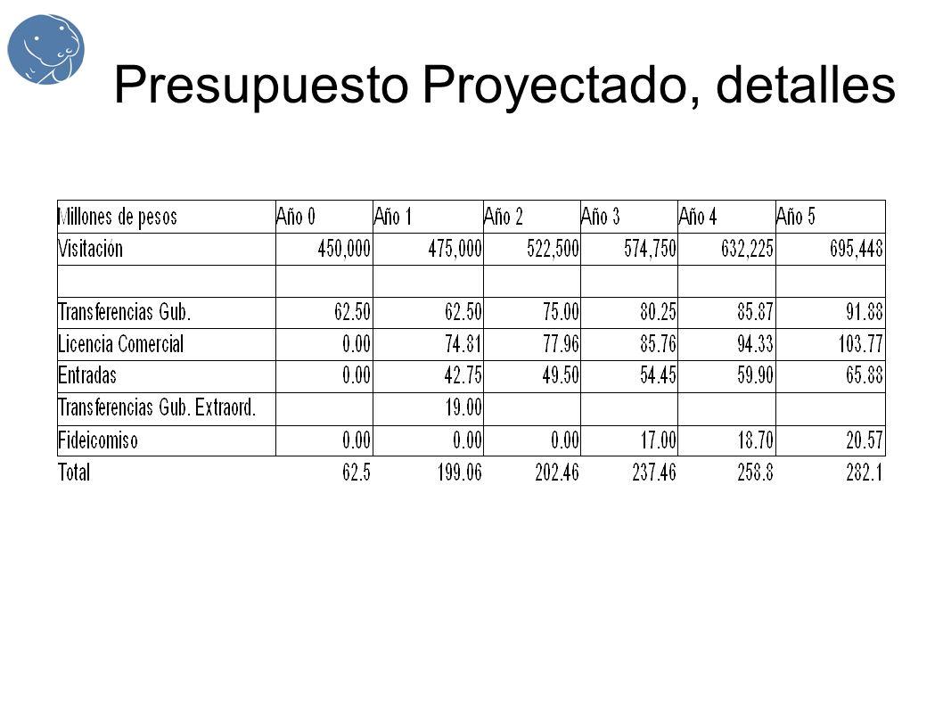Presupuesto Proyectado, detalles