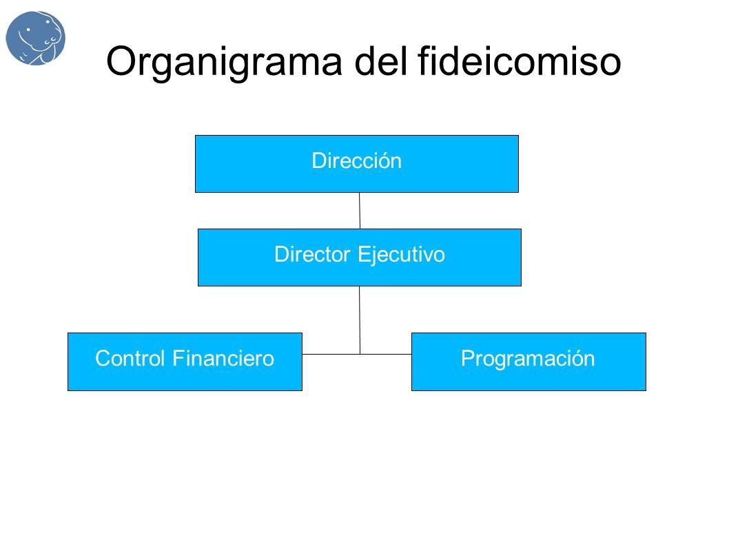 Organigrama del fideicomiso Dirección Director Ejecutivo Control FinancieroProgramación