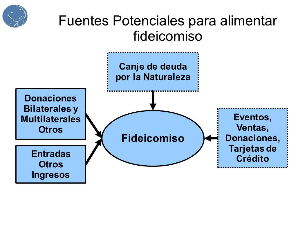 Fuentes Potenciales para alimentar fideicomiso Fideicomiso Canje de deuda por la Naturaleza Donaciones Bilaterales y Multilaterales Otros Entradas Otr