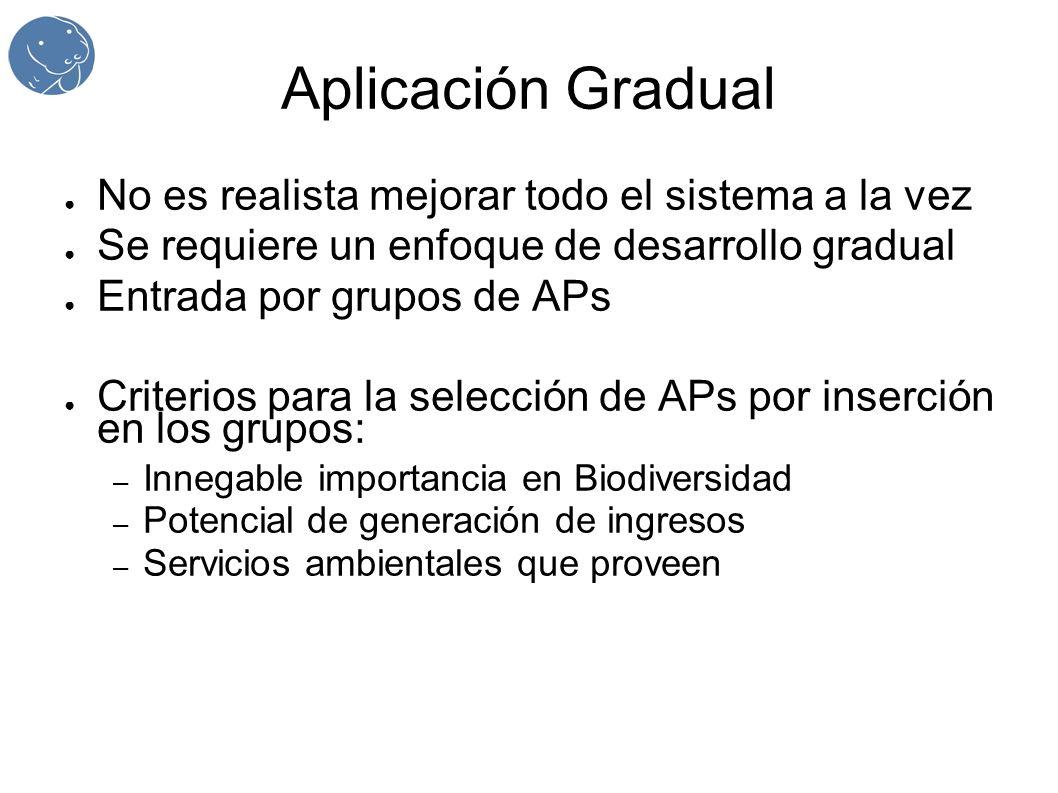 Aplicación Gradual No es realista mejorar todo el sistema a la vez Se requiere un enfoque de desarrollo gradual Entrada por grupos de APs Criterios para la selección de APs por inserción en los grupos: – Innegable importancia en Biodiversidad – Potencial de generación de ingresos – Servicios ambientales que proveen