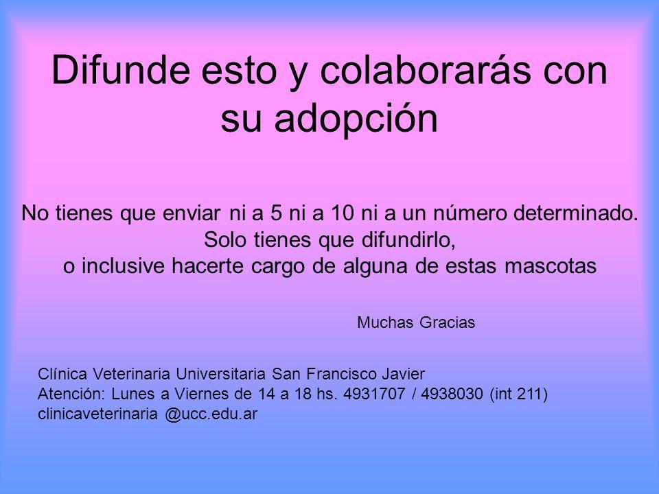 Difunde esto y colaborarás con su adopción No tienes que enviar ni a 5 ni a 10 ni a un número determinado.