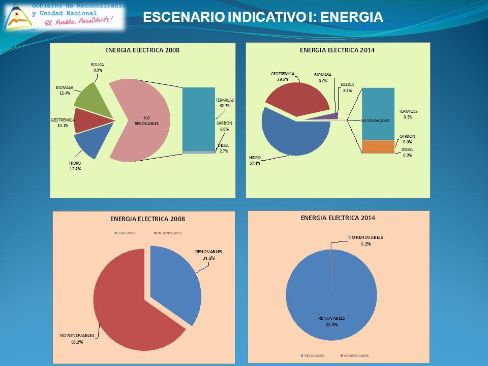 ESCENARIO INDICATIVO I: ENERGIA