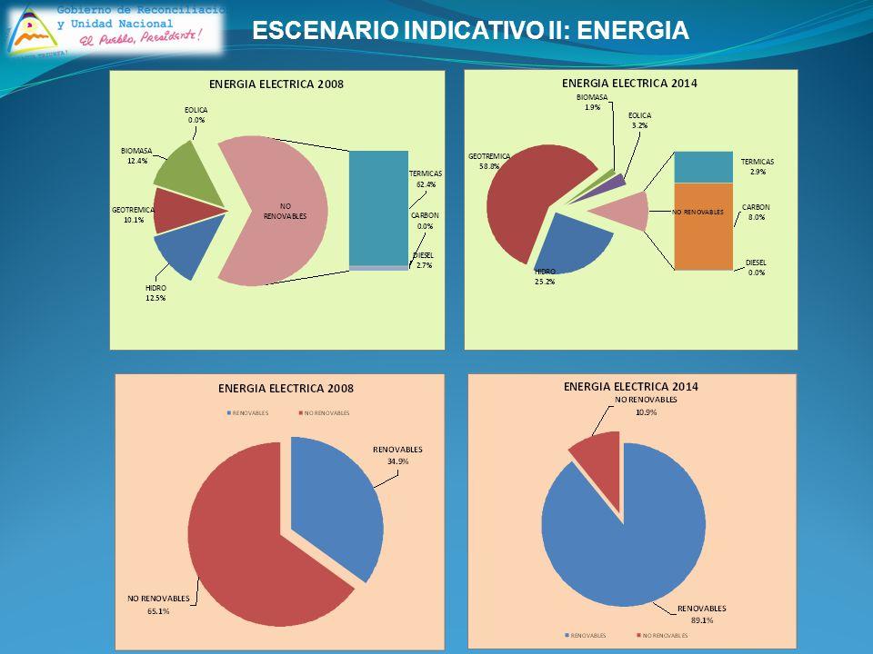 ESCENARIO INDICATIVO II: ENERGIA