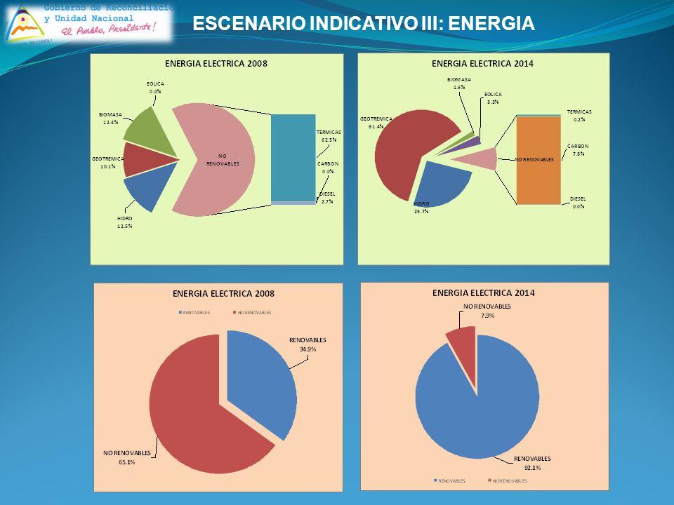 ESCENARIO INDICATIVO III: ENERGIA